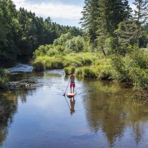 Paddleboard, paddleboarding, kayaking, prince edward island,