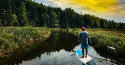 Paddleboard Tour